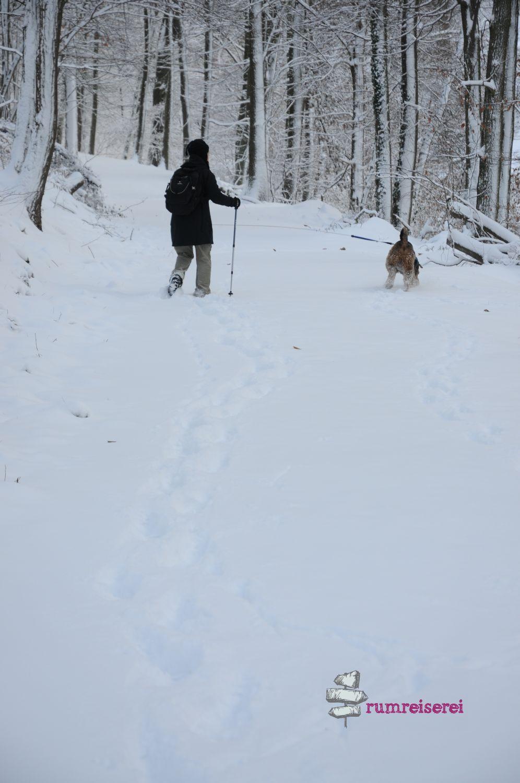 winterwanderung-heidelberg006