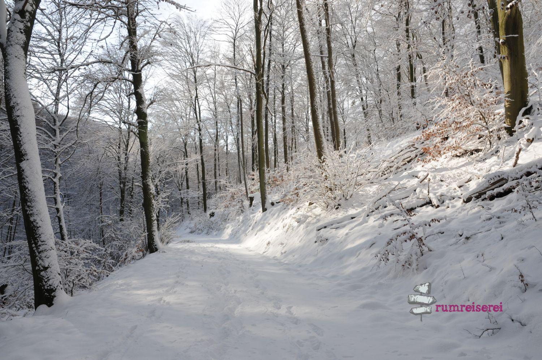 winterwanderung-heidelberg009