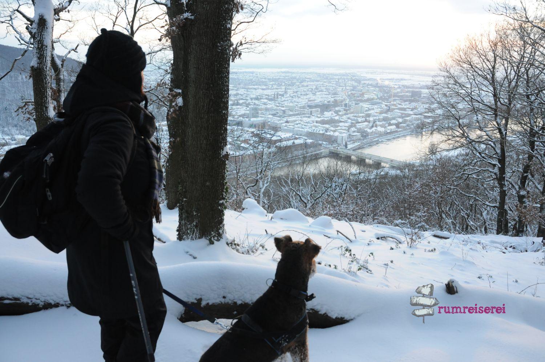 winterwanderung-heidelberg017