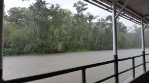 Regen - viel und ausdauernd
